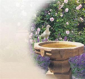 Bilder Für Garten : vogelbad aus stein f r den garten kaufen vogelb der online steinguss granit sandstein ~ Sanjose-hotels-ca.com Haus und Dekorationen