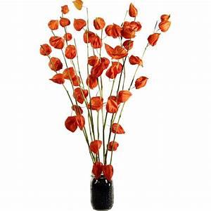 Fruits/Pods Japanese Lanterns - Physalis