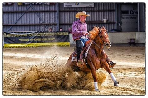 horse reining riding sliding styles different stop flickr equestrian stops via source edward ihearthorses reiner signs games