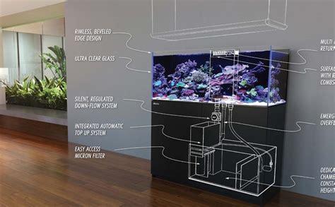 gallon fish tanks  aquarium setup filtration