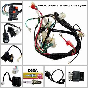 Full Wiring Harness Loom Solenoid Coil Regulator Cdi 150