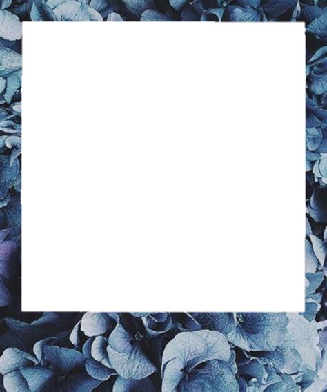polaroid aesthetic frame flower sticker