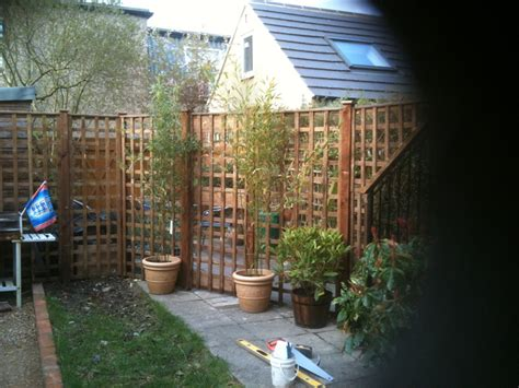 Stand Alone Garden Trellis by Trellis Fencing Company Surrey And