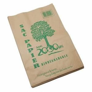 Sac Papier Kraft Deco : sac en papier kraft 100 l x10 ~ Dallasstarsshop.com Idées de Décoration