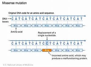 Mutation, Missense