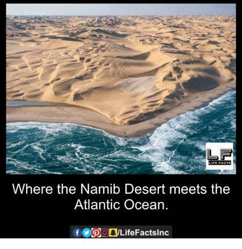 Ocean Memes - life facts where the namib desert meets the atlantic ocean meme on me me