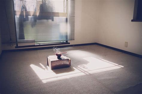 ?Goodbye, Things? makes the case for radical minimalism