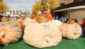 Liggetts beat their own Pumpkin Show record | Pumpkin Show ...