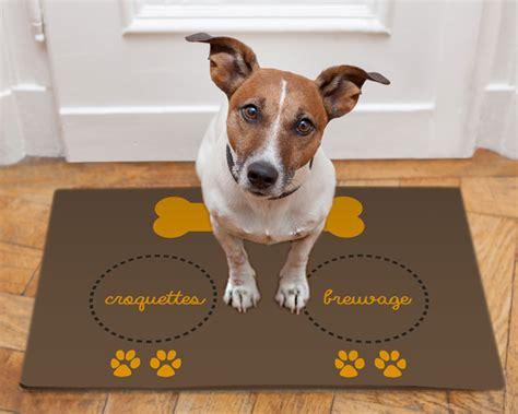 chien cuisiné tapis de sol pour chien food