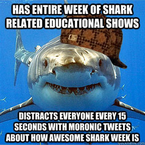 Meme Shark - here come the shark week memes