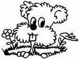 Coloring Groundhog Gopher Prairie Pages Woodchuck Dog Ws sketch template