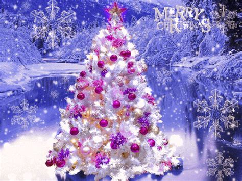merry christmas tree pictures   images
