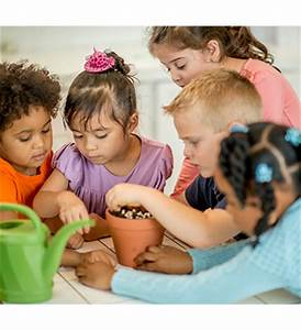Expand Learning with Mixed-Age Groups — Better Kid Care ...