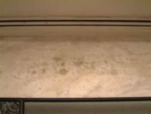 Aspergillus Mold Decontamination from Indoor Environment Aspergillosis