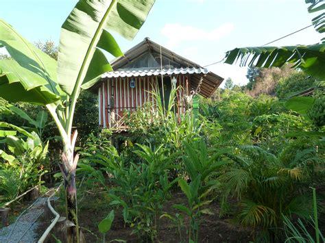 jungle farm 12 homestays for an offbeat trip photos