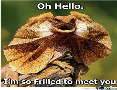 Lizard Meme - frilled lizard is frilled by butters103 meme center