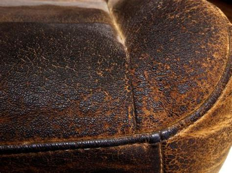 king ranch seats care conditioning  consequences
