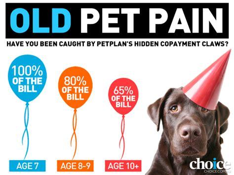 pet insurance choice