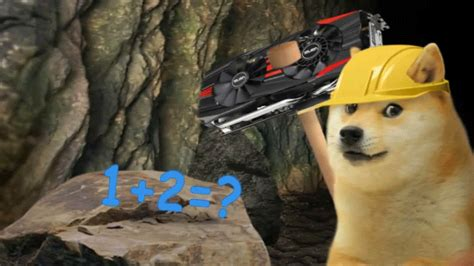 doge gifs find share  giphy