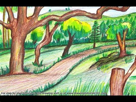 draw  forest scenery step  step  easy