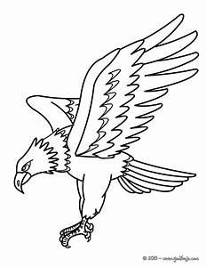Colorear un águila