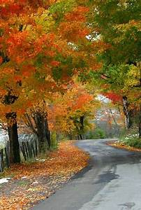 CountryRoads | Take me home country road... | Pinterest ...