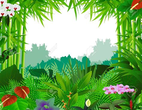 Rainforest Clipart Rainforest Clipart Beautiful Background Pencil And In