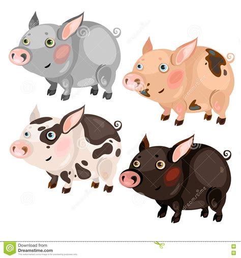 spotted cartoon pigs  colors stock vector