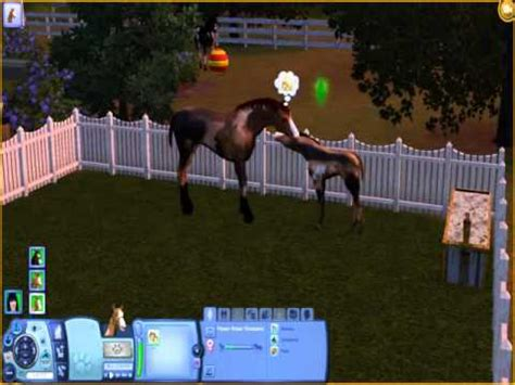 sims  pets  baby horses gameplay    youtube