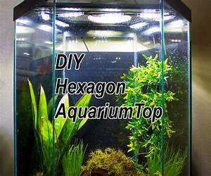 Diy Led Hood For A 20 Gallon Hexagon Aquarium Tank   6