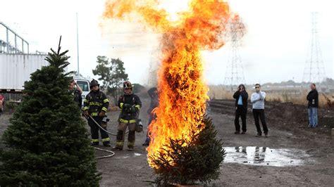 christmas tree curb burns house