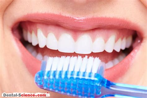 healthy gum color healthy gums how to keep your gums healthy dental science