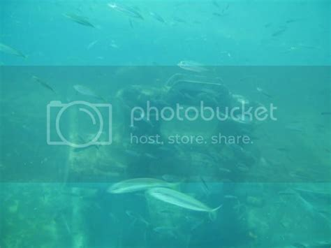 tug sinking panama sea beach