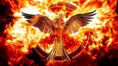 Hunger Games Bird Explosion Tribute Panem Von