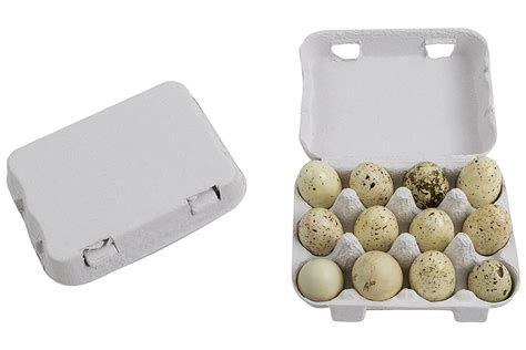 Simple edit with smart layers. Plastic & Paper Quail Egg Cartons & Boxes Packaging ...