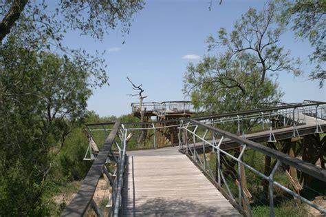 bentsen rio grande valley state park hawk observation tower texas parks wildlife department