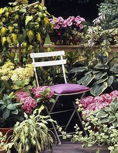 Sommerblumen Für Schatten : das beste f r den balkon im schatten planungswelten ~ Michelbontemps.com Haus und Dekorationen