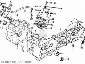 Honda Nu50 Urban Express 1982  C  Usa Parts List