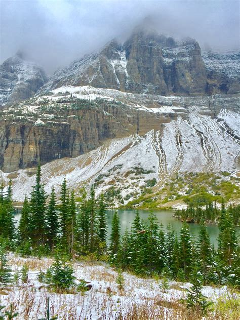 Top 10 Best Hikes For Kids In Glacier National Park