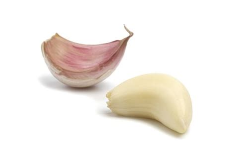 clove garlic the best garlic varieties a guide life and style the