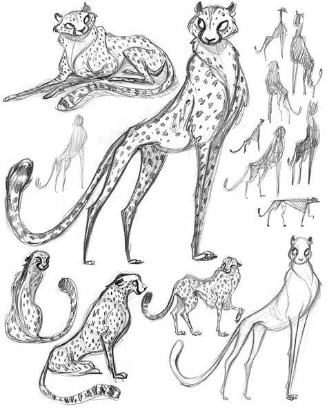 cachava  cheetah