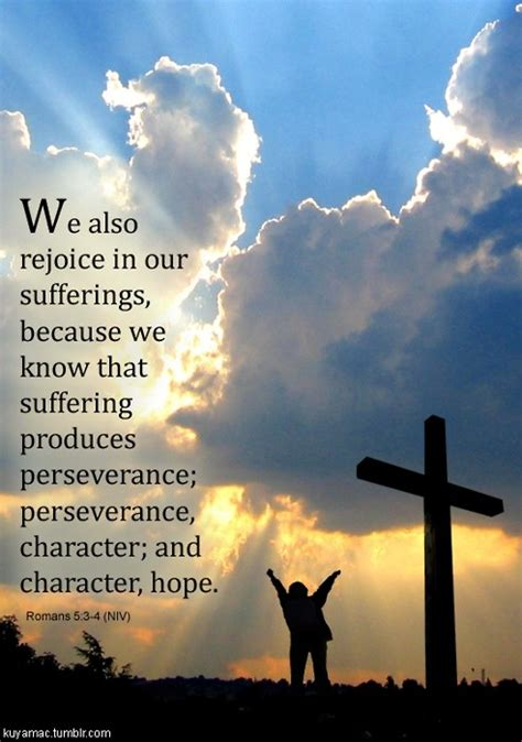 1509 quotes have been tagged as perseverance: Perseverance Bible Quotes On Hope. QuotesGram