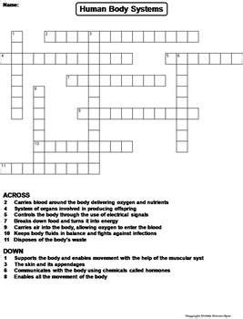 Human Body Systems Worksheet Crossword Puzzle By Science Spot Tpt