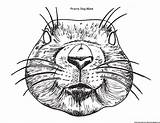 Coloring Animals Dog Texas Mask Pages Prairie Template Dailycoloringpages Printable Animal sketch template