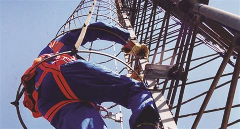 vertical fall protection systems oleams