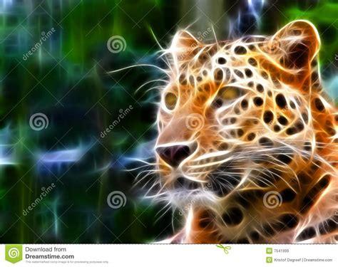 jaguar illustration royalty  stock images image