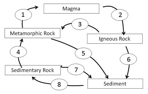 Rock Cycle Diagram To Label by Geology Geology 101 With Ryker At Carolina