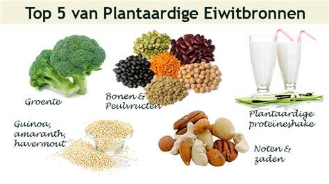 waarvoor dienen enzymen