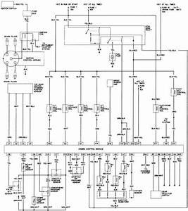 1988 Honda Accord Headlight Wiring