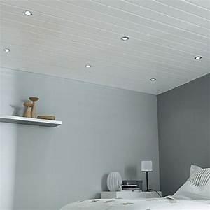 Faux Plafond Pvc : d couvrez les tarifs du faux plafond au m selon ses ~ Melissatoandfro.com Idées de Décoration